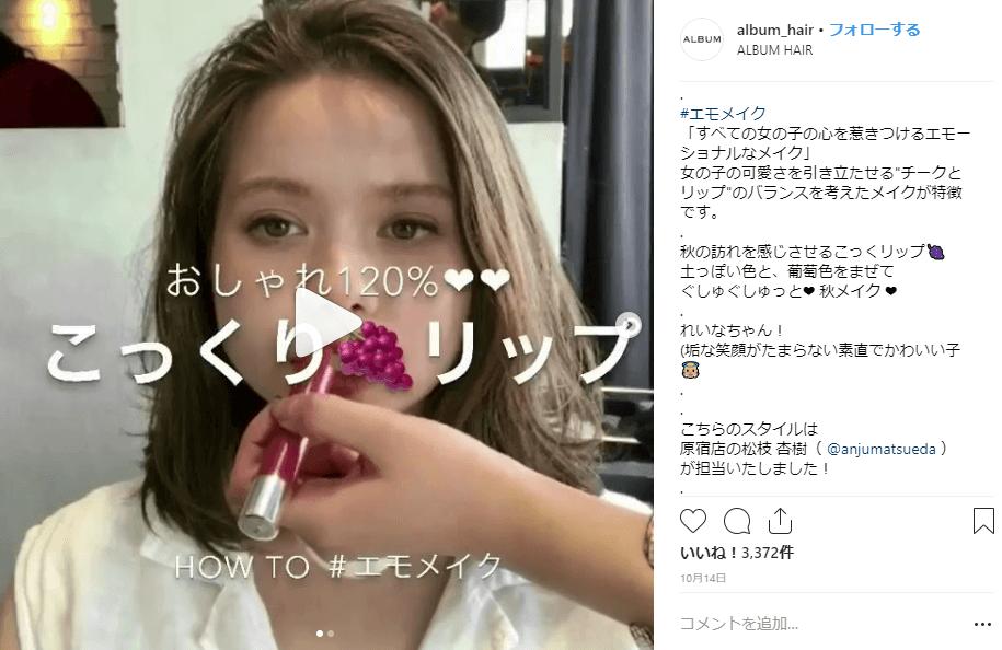 インスタグラムメイク紹介参照画像